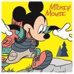 Disney Mickey Mágikus Kéztörlő arctörlő, törölköző 30*30cm